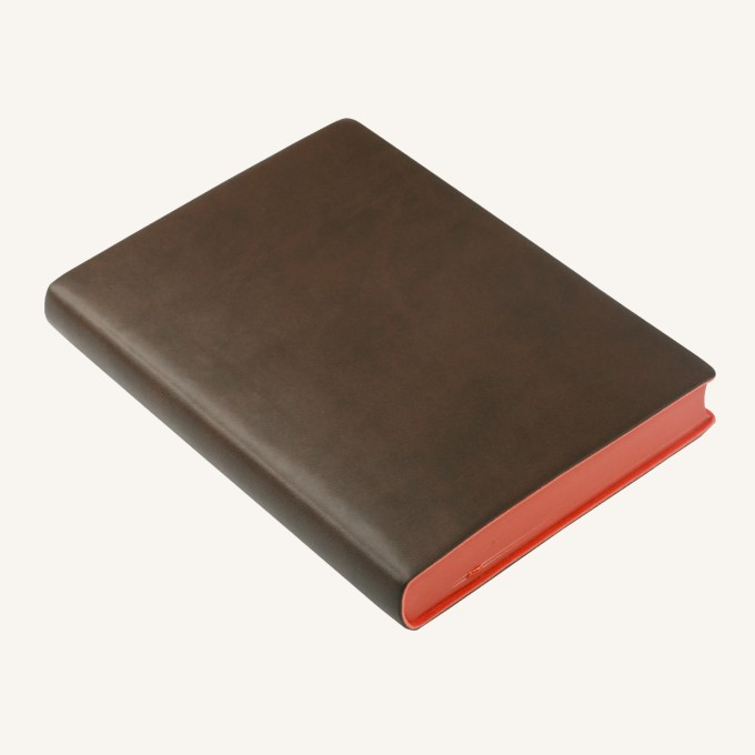 2017 Signature Diary – A6, Brown, Chinese version