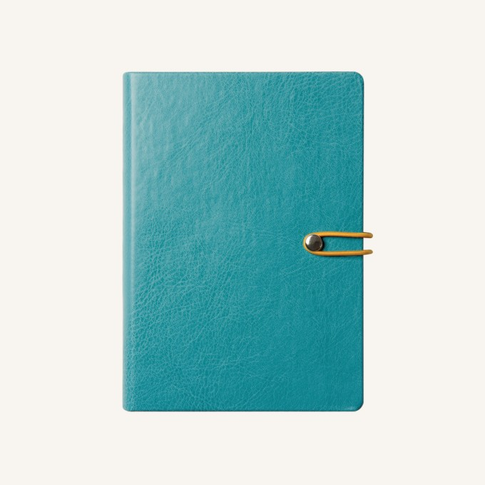 2020 Executive Diary – A5, Blue, Chinese version