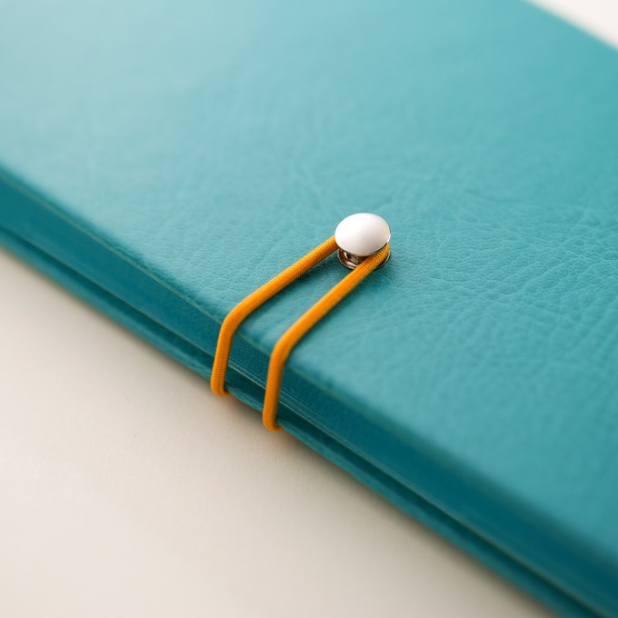 2020 Executive Diary – Pocket, Blue, Chinese version