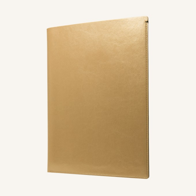MacBook (2015) Pocket - Gold