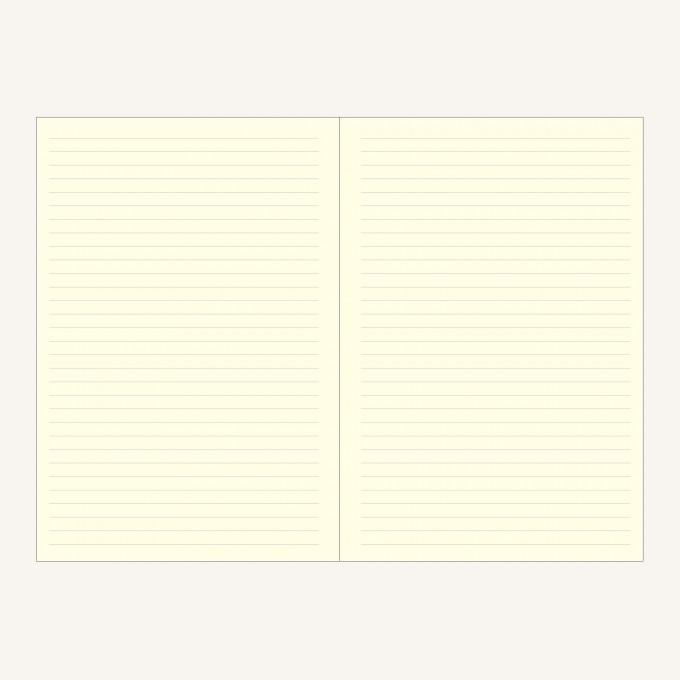 旗舰二重奏系列横线/点格本 - A5, 绿/橙色
